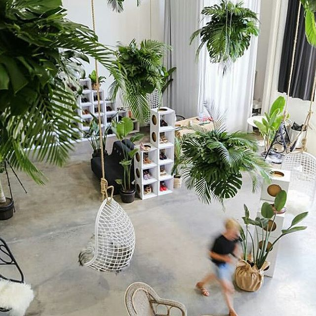 Melbourne shoe brand Bared Footwear is up showing their wares at the #baredtreechange concept store in Sydney from 10 to 6 today. They are using 250 Paper Tiger cubes in the fitout. Check it out if you can! Looks great. The Studio 2-85 Dunning Ave Rosebury