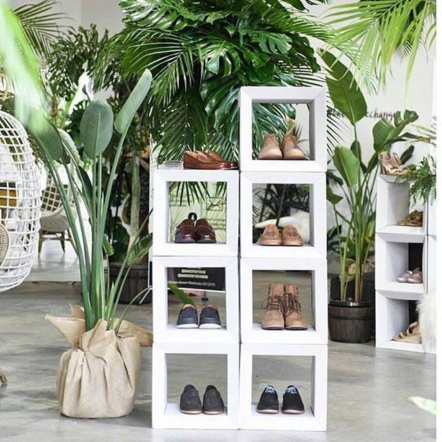 @baredfootwear from Melbourne up in Sydney for 1 week only. Nice and green with the #papertiger cardboard cubes and great shoes. It's called #baredtreechange and its in Rosebury.