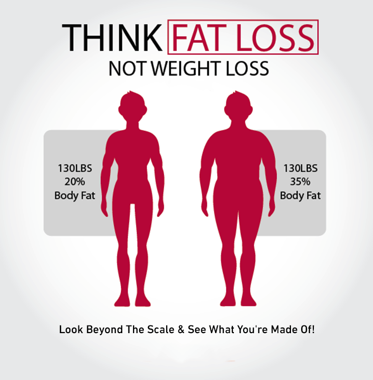 InBody Fat Loss.png