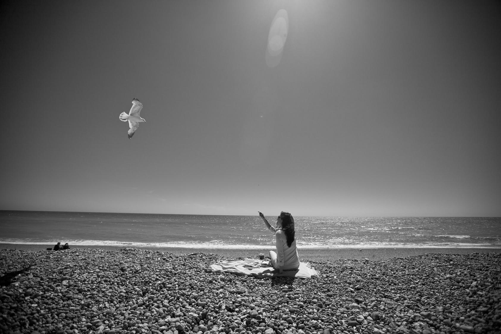 Brighton2014_dvlpd-4920.jpg