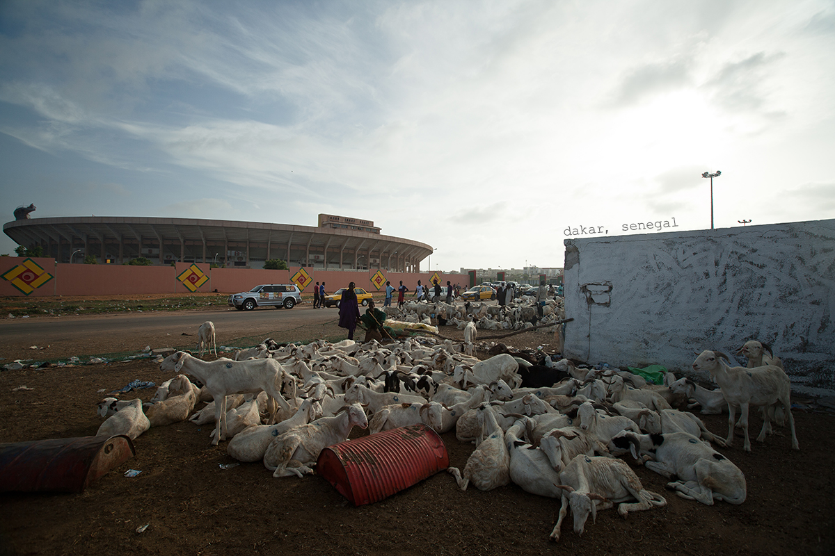 Senegal2014_PhotoSelects-005-2text.jpg