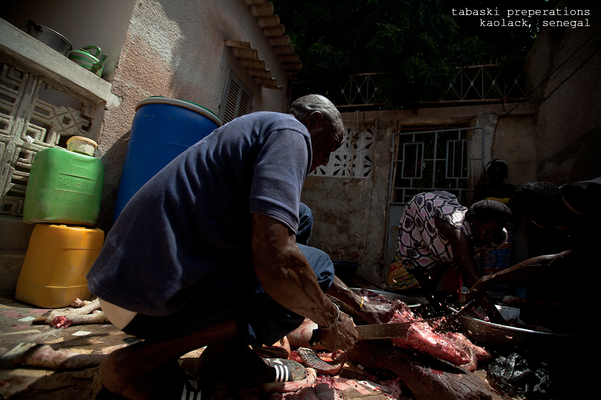 Senegal2014_PhotoSelects-006-2text.jpg