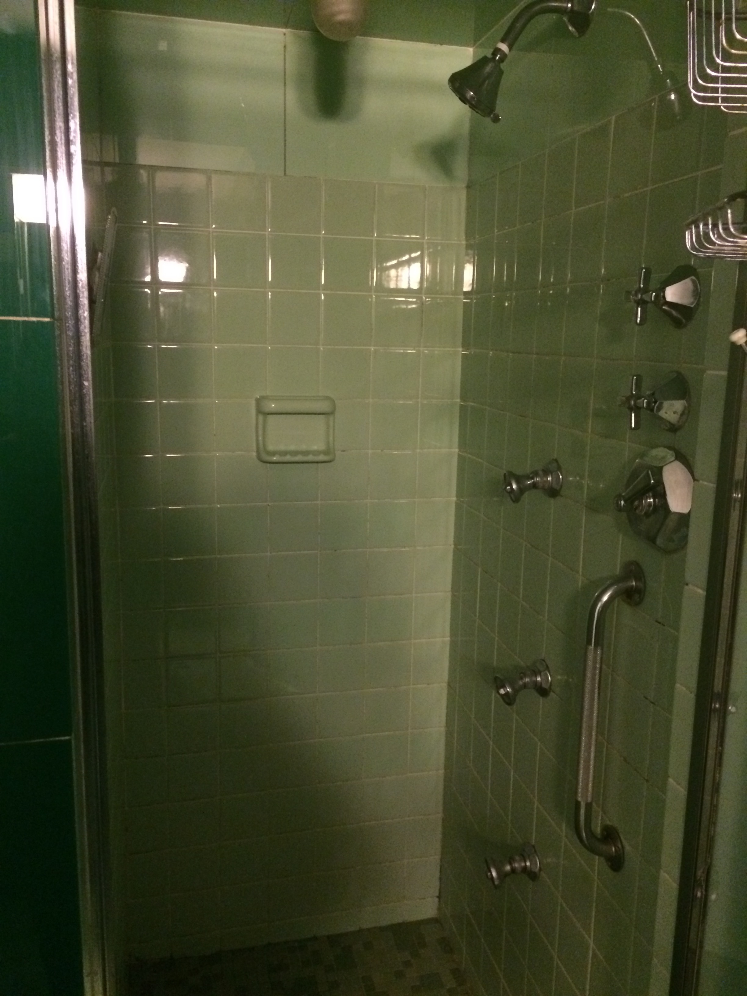 If they made green plumbing fixtures, we would have expected them here.