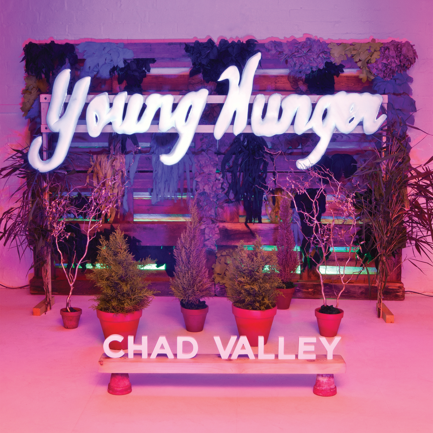 Young Hunger (2012)  UK:  Vinyl  /  CD   US: SOLD OUT