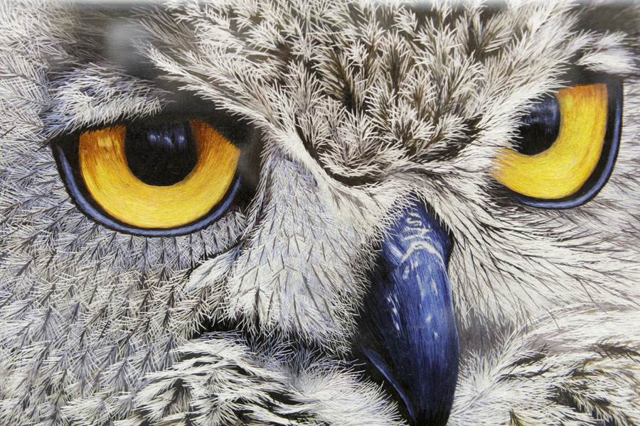 Asian Artist Award: ' Owl ' at Grand Rapids Police Department, by YanFang Inlow