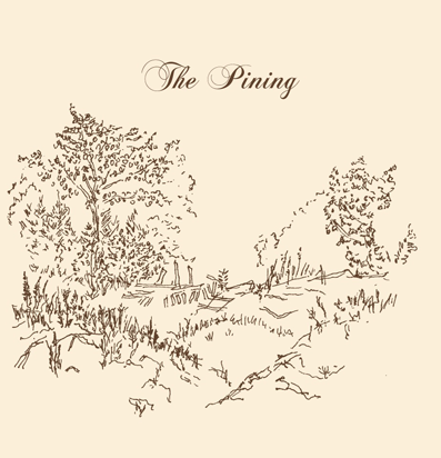 THE PINING  Blocks 2011  Fiddle arrangements; Fiddle
