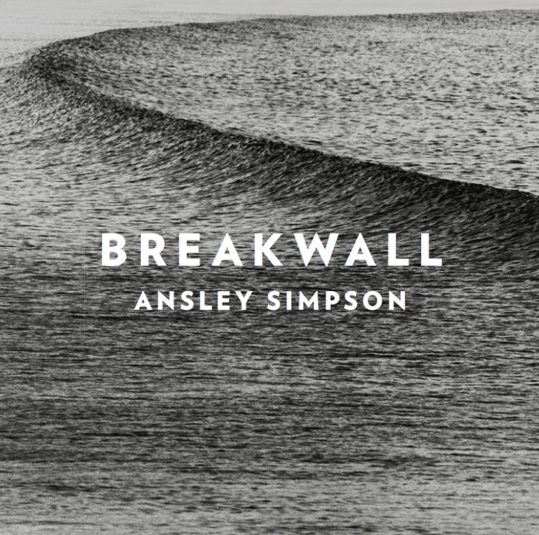 "ANSLEY SIMPSON  ""Breakwall""  2017  Violin"