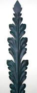 Black Verde