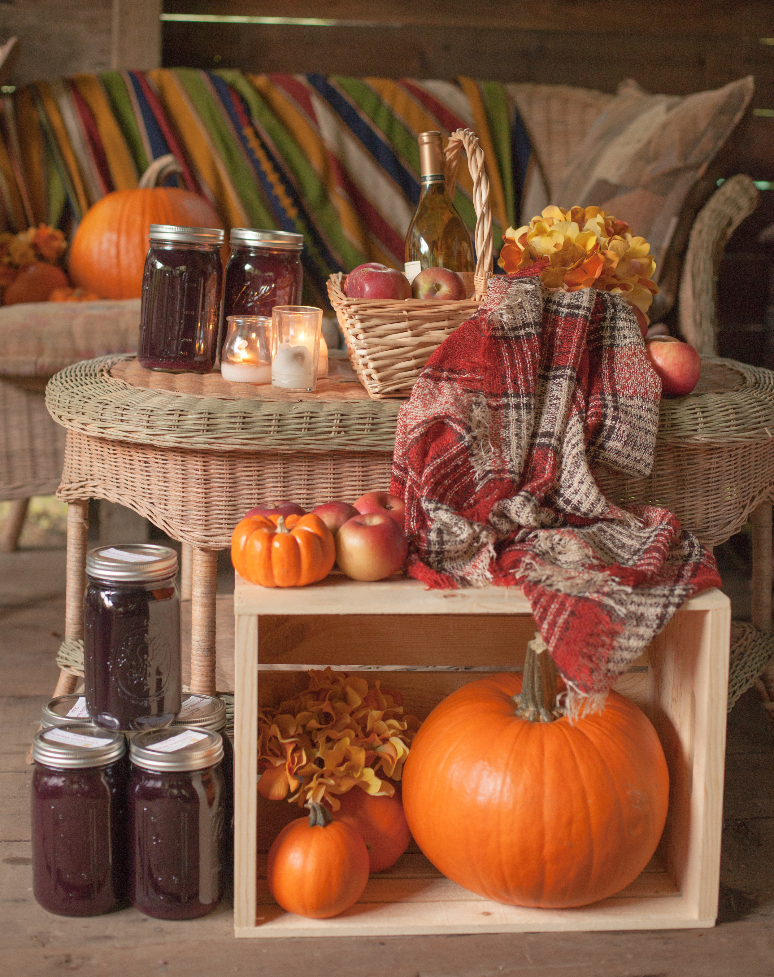 Avenle Fall Lookbook-85.jpg