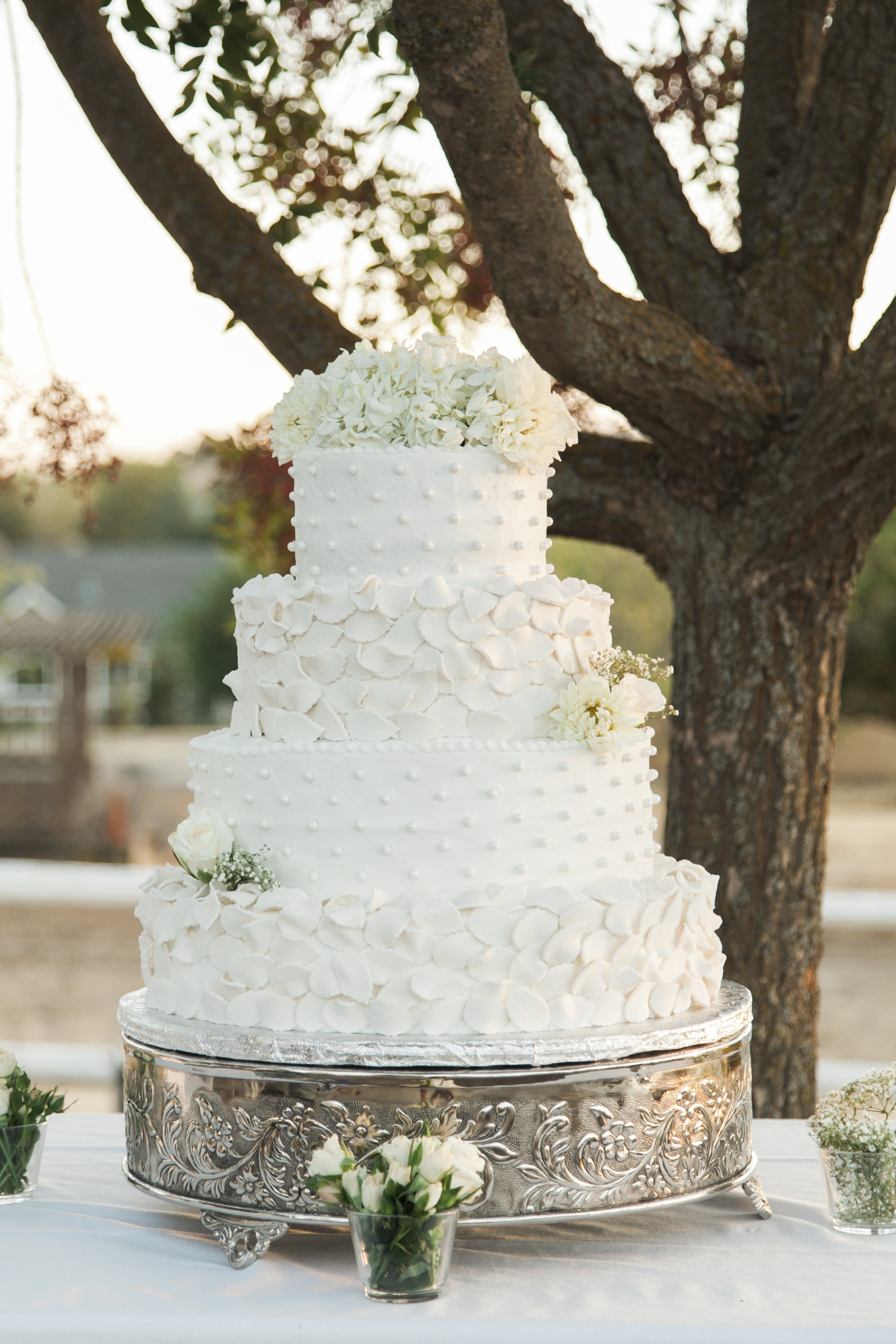 Vacaville Wedding Photographer Fairfield Vallejo-36.jpg