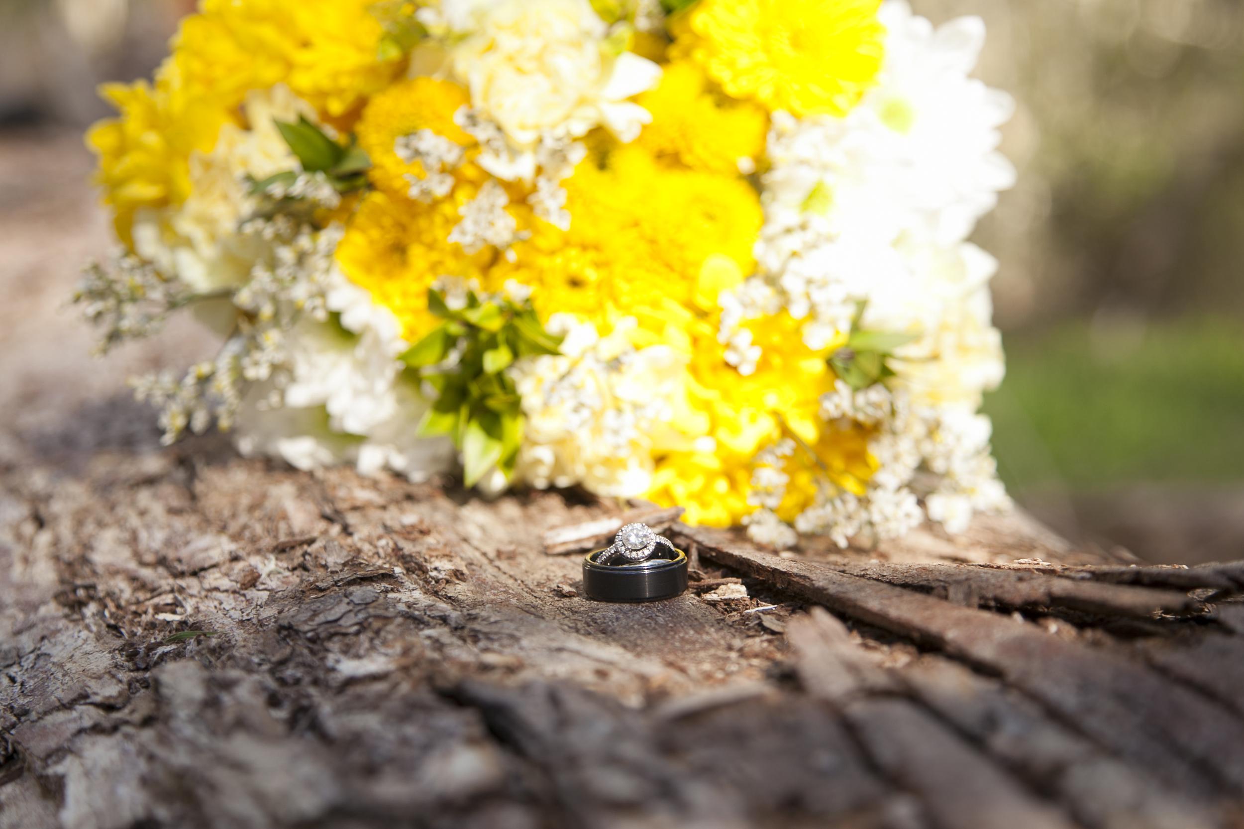 Tilden Park Berkeley Wedding Photographer-Meo Baaklini047.jpg