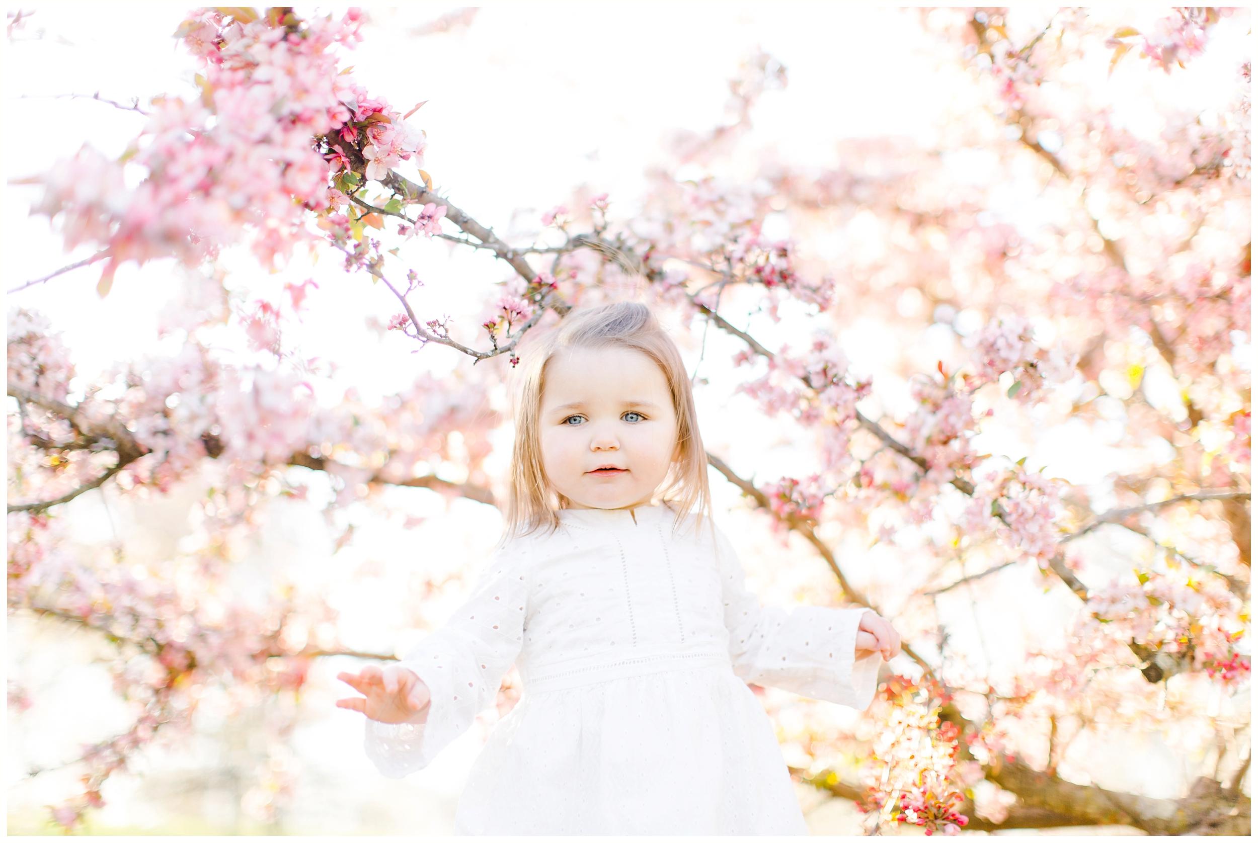 lexington-ky-family-lifestyle-photos-by-priscilla-baierlein_0222.jpg