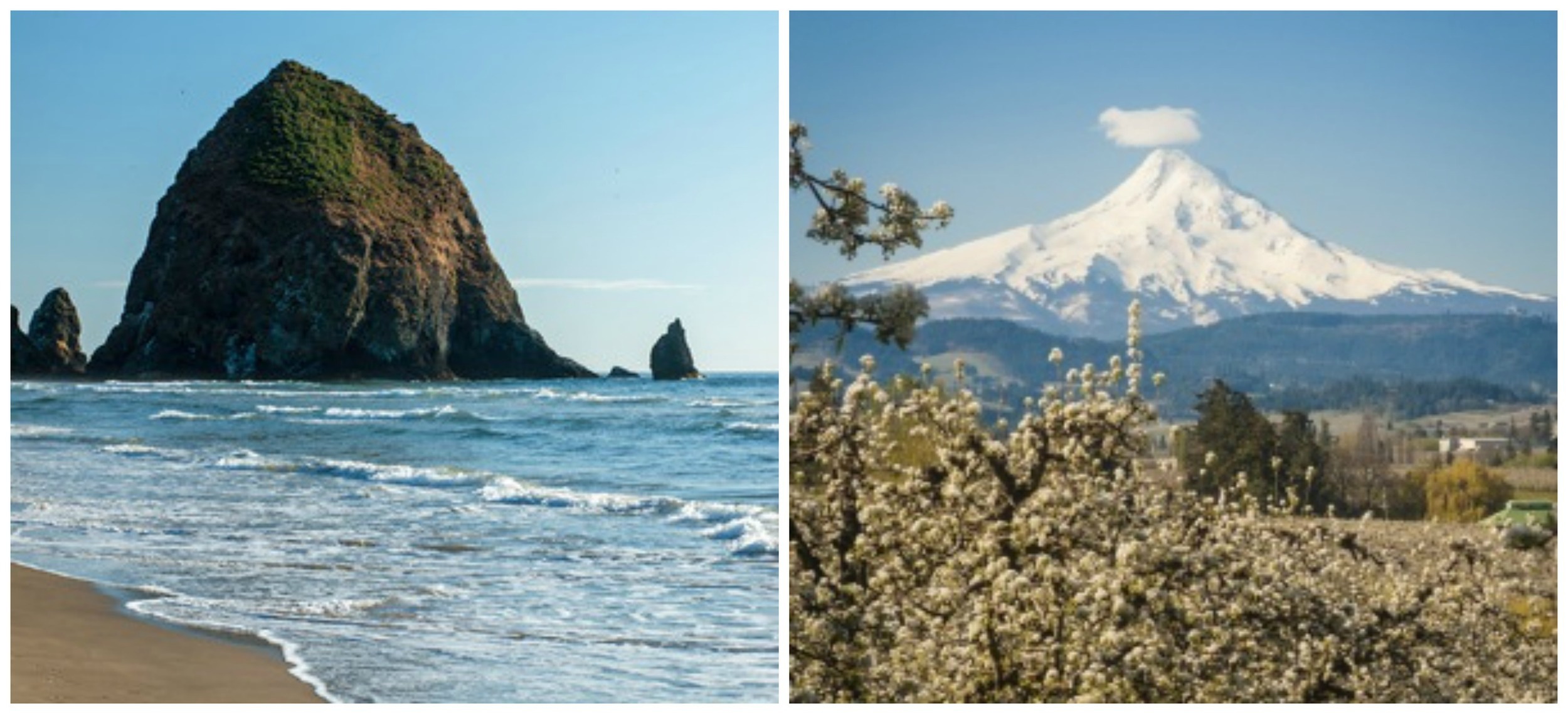 Oregon has spectacular mountains and a beautiful coastline, but a new study says it also has a high cost-of-living, high taxes and a lot of rain that may deter retirees from settling here.