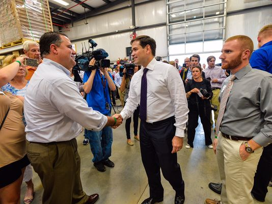 Marco Rubio is banking on suburban voters to give him the political momentum to derail Donald Trump en route to the 2016 Republican presidential nomination.