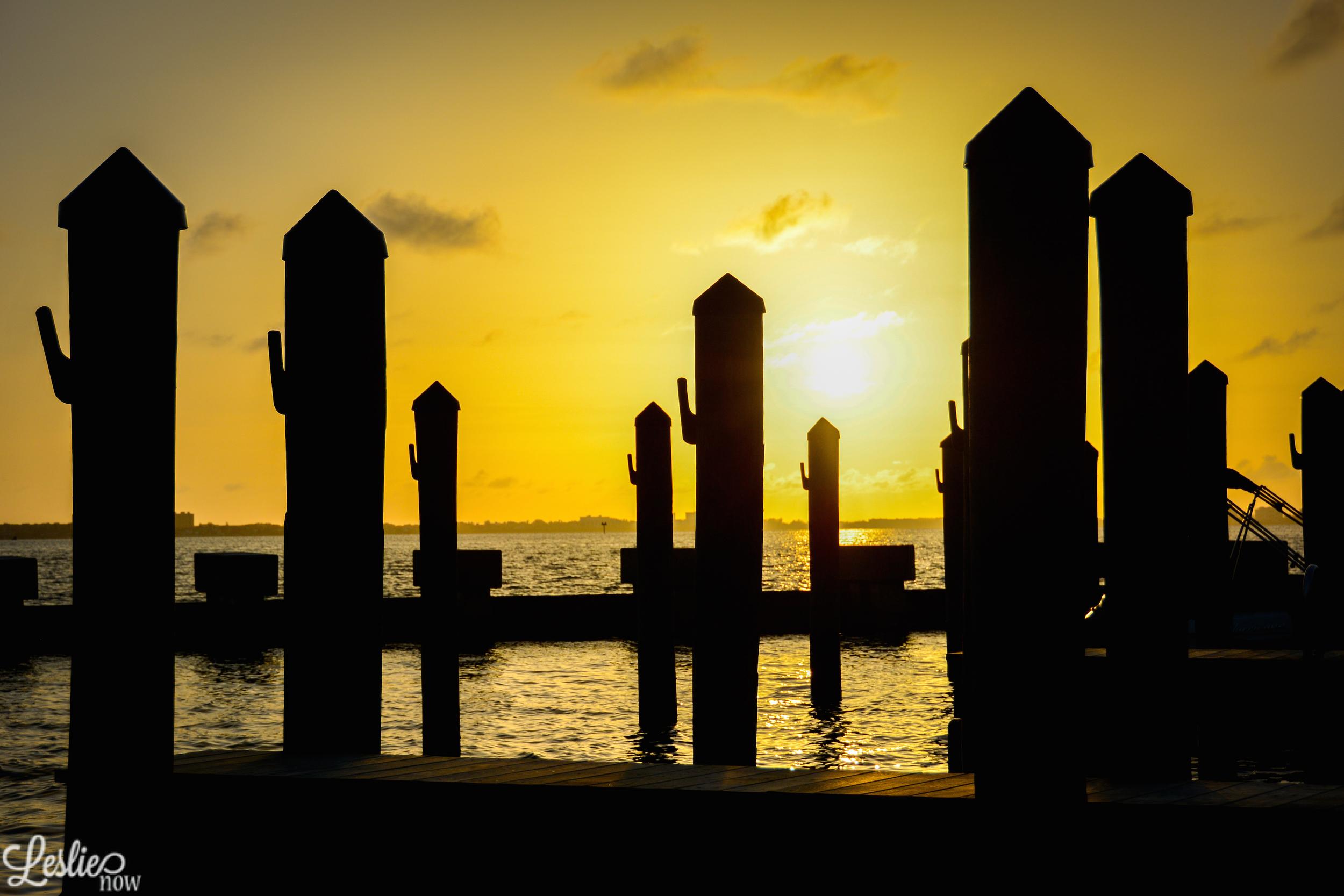 Golden Dock Sunset - Leslie Brown