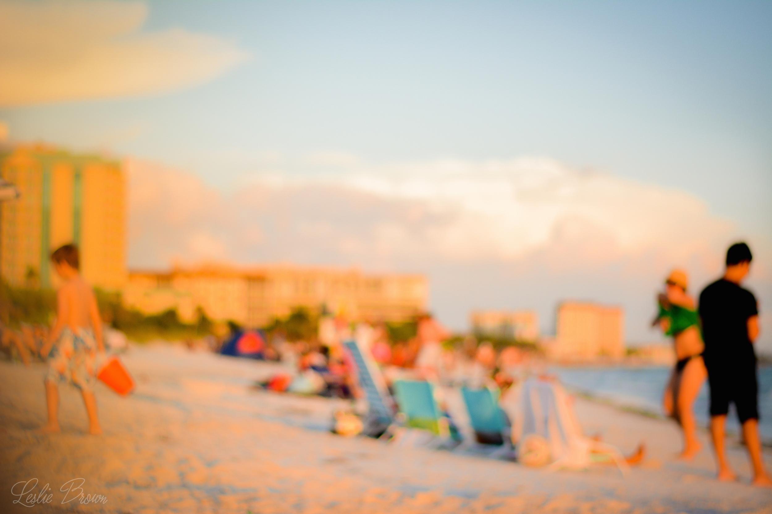 Beach gazing - Leslie Brown