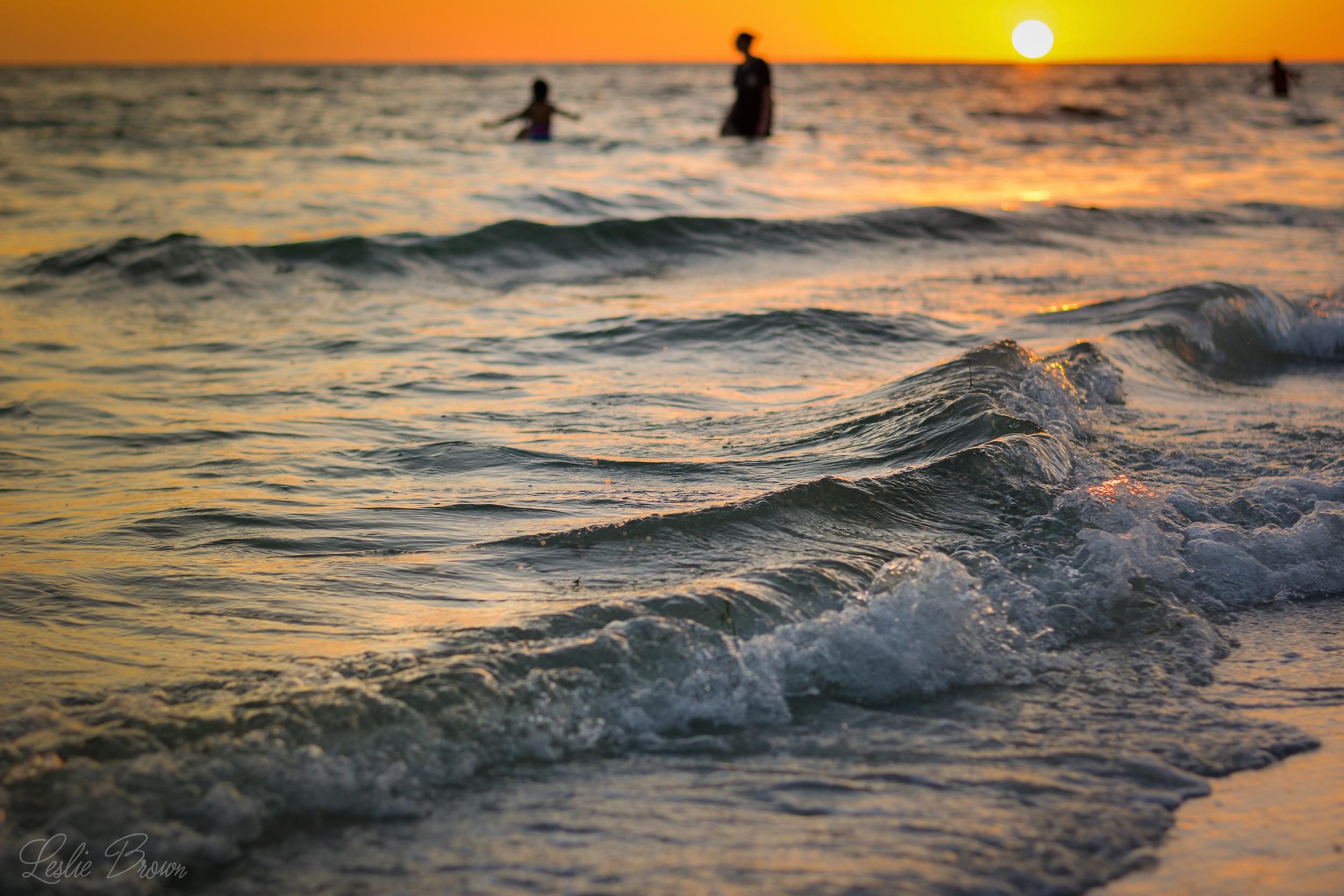 Golden Waves - Leslie Brown