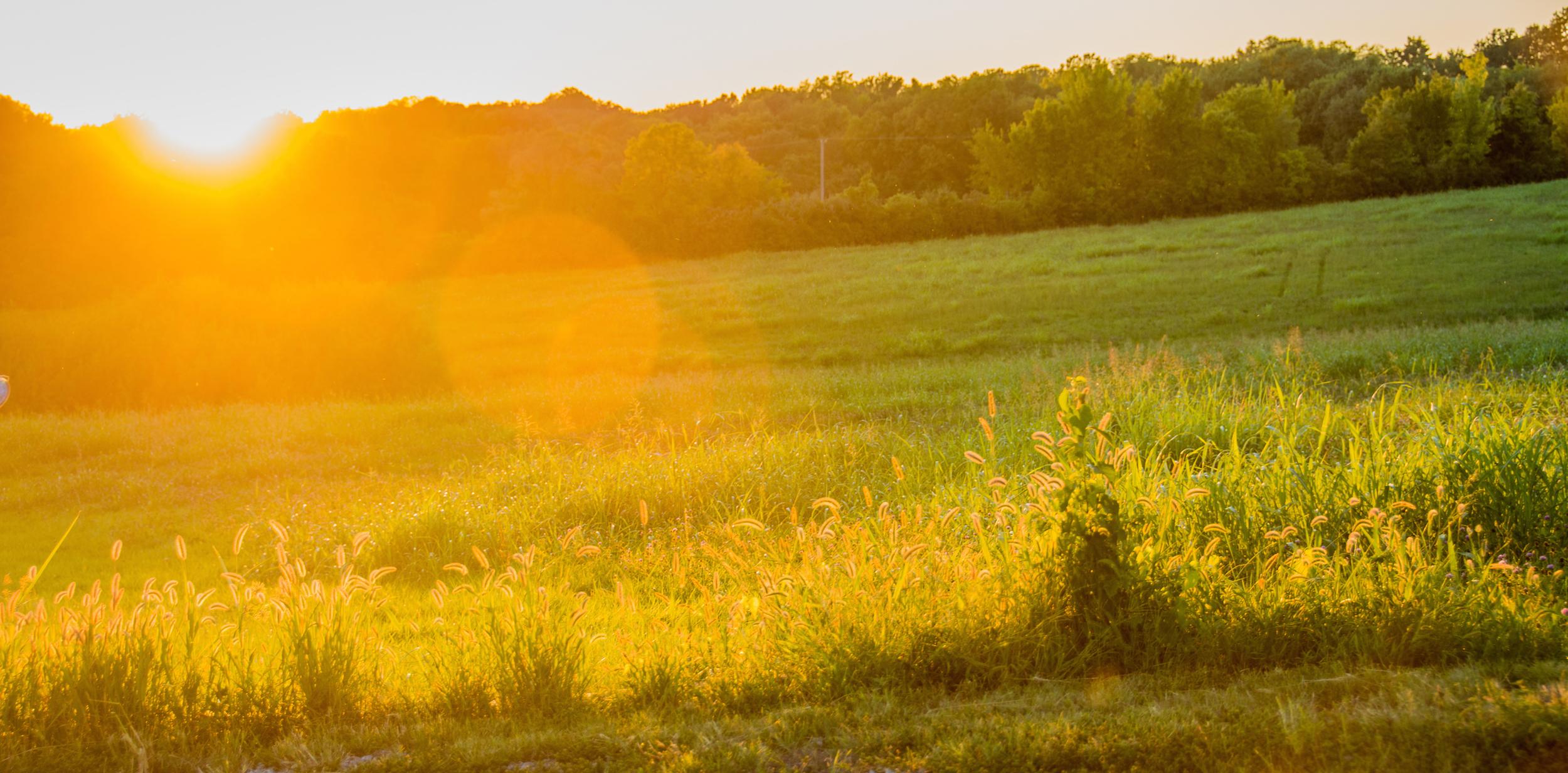 Golden Moment Kansas - Leslie Brown