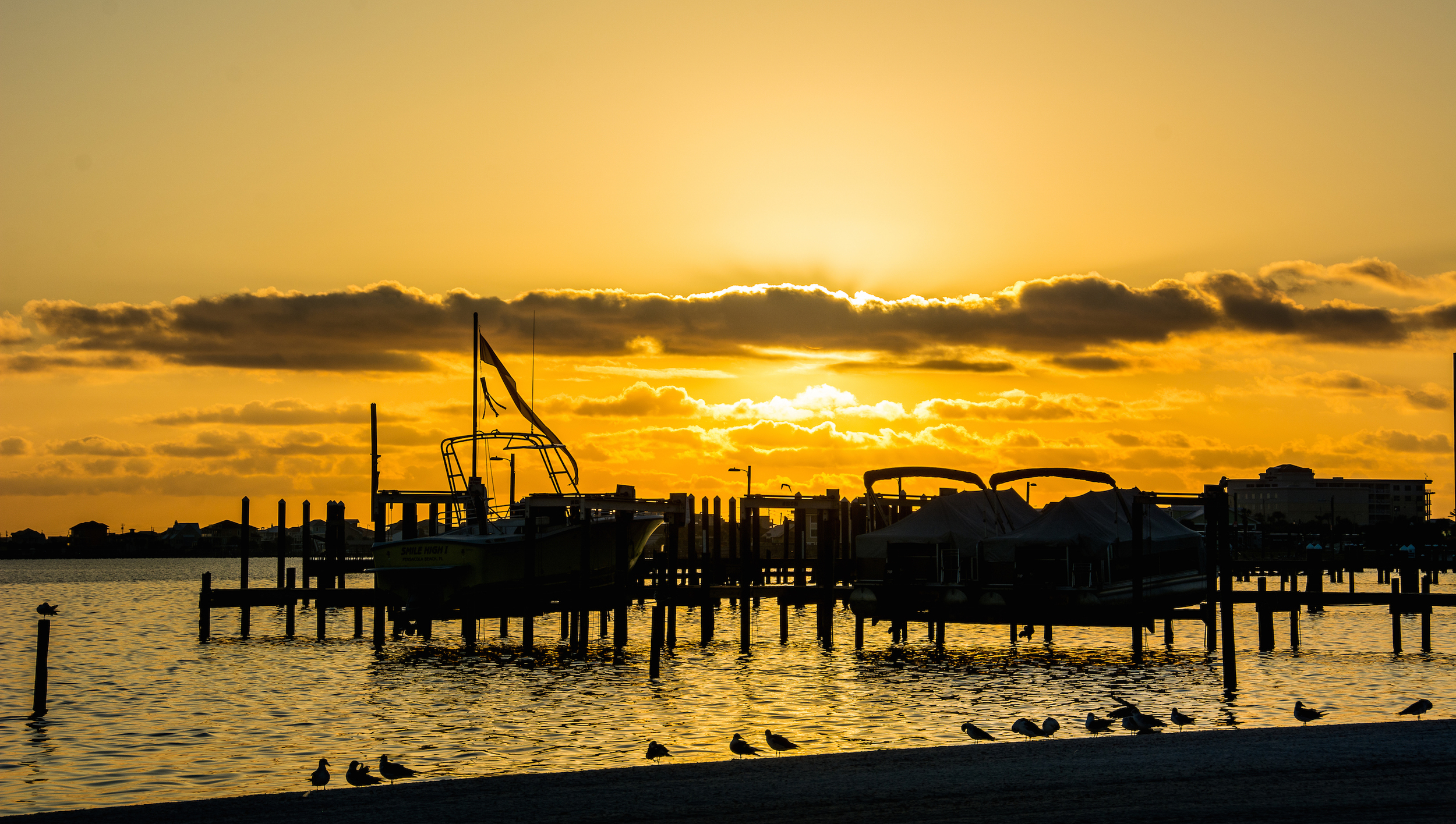 Golden Dock of the Bay - Leslie Brown