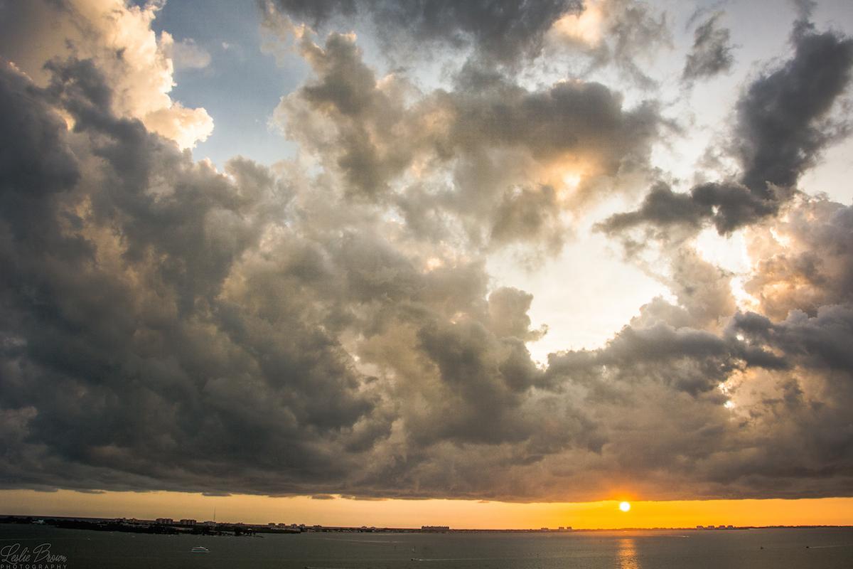 Overshadowing the Sun - Leslie Brown