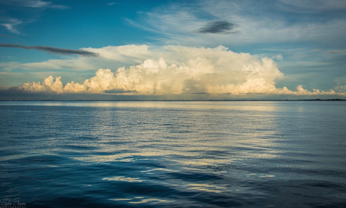Still Water Sky - Leslie Brown