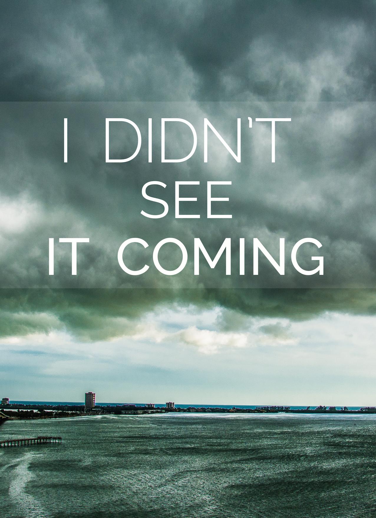 Did not see it coming - Leslie Brown