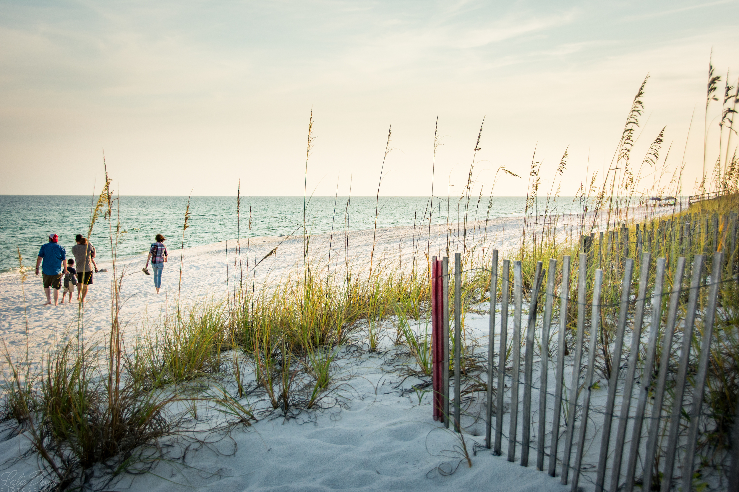 The Family Beachwalk - Leslie Brown