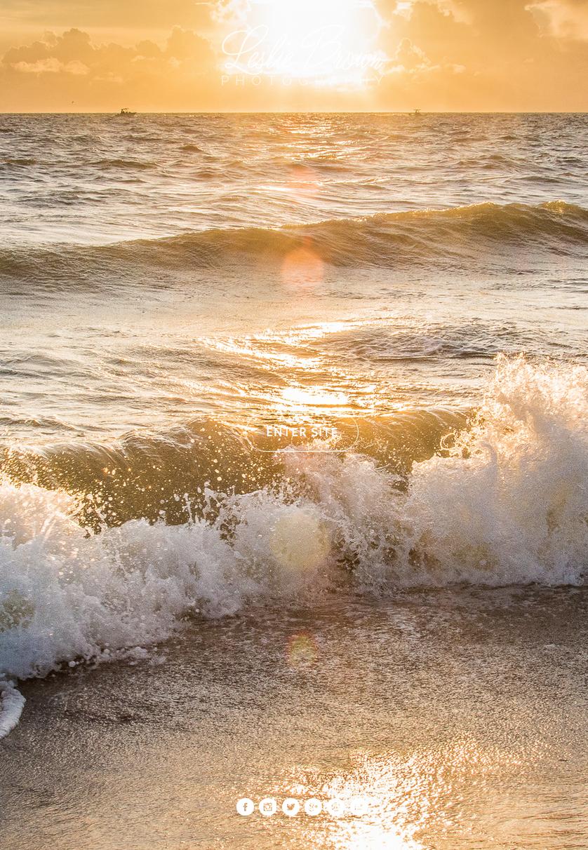 Waves of Peace - Leslie Brown