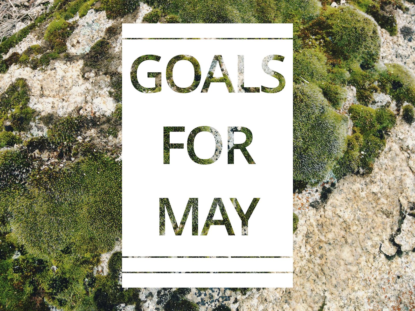 goals+for+may.png