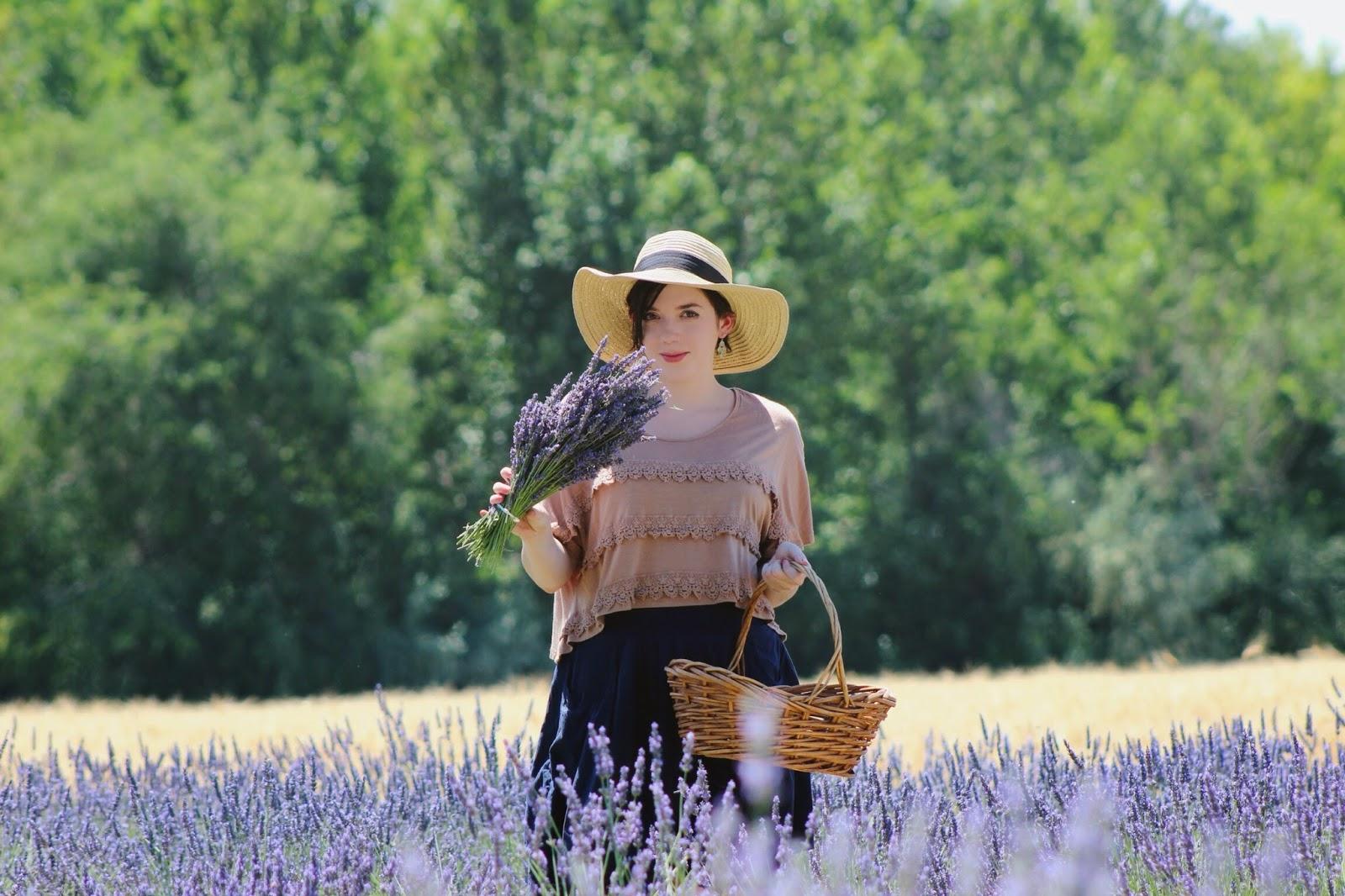 lavender+fields.jpg