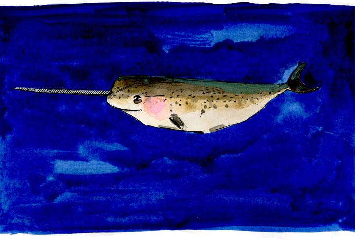 whale6-small.jpg
