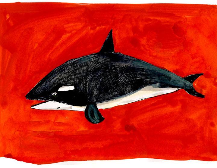 whale2-small.jpg
