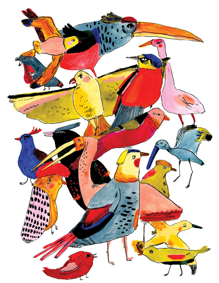 bird group illustration