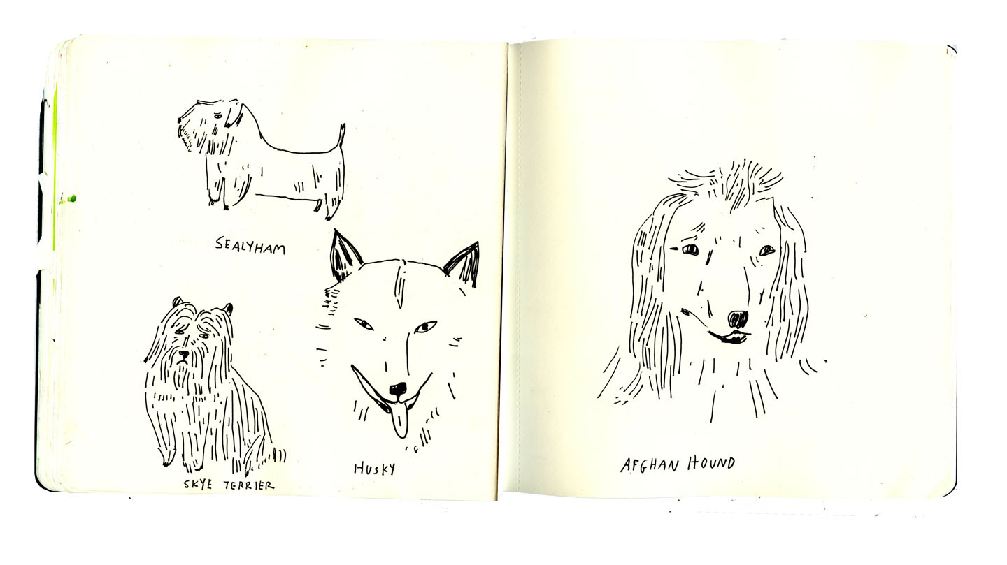 sketchbook dogs