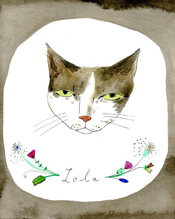 Lola cat