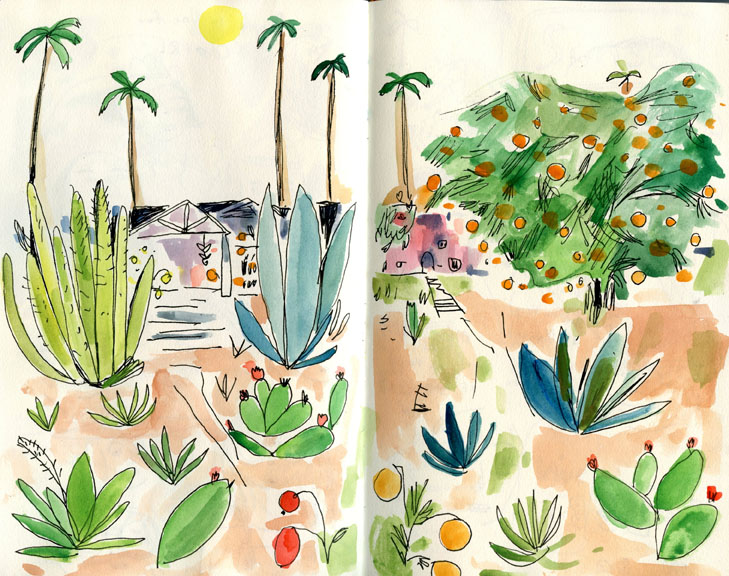 LA plants sketchbook