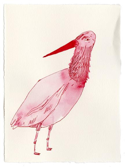 elizabeth graeber ink birds