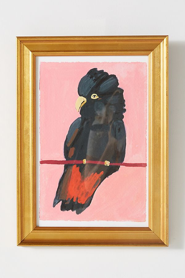 Red-Tailed Black Cockatoo Wall Art