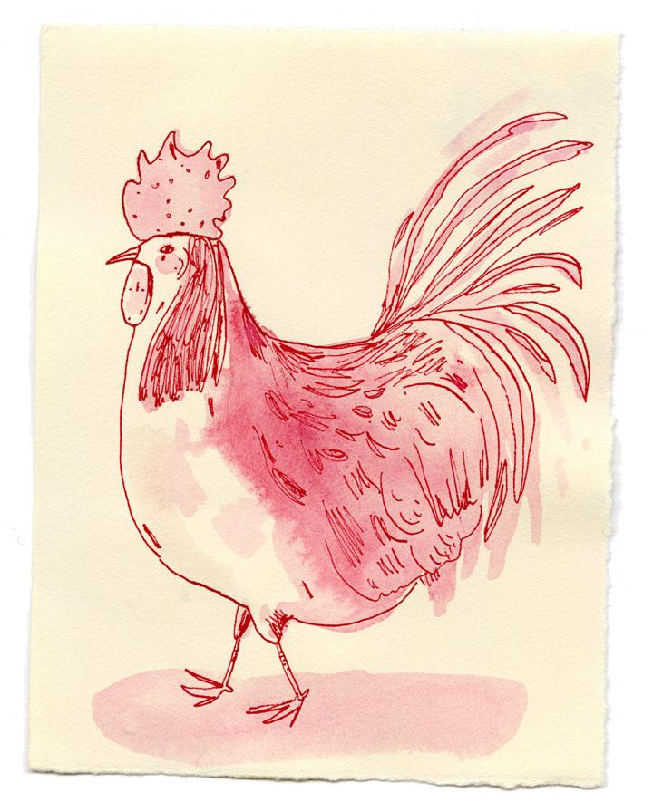Elizabeth Graeber bird