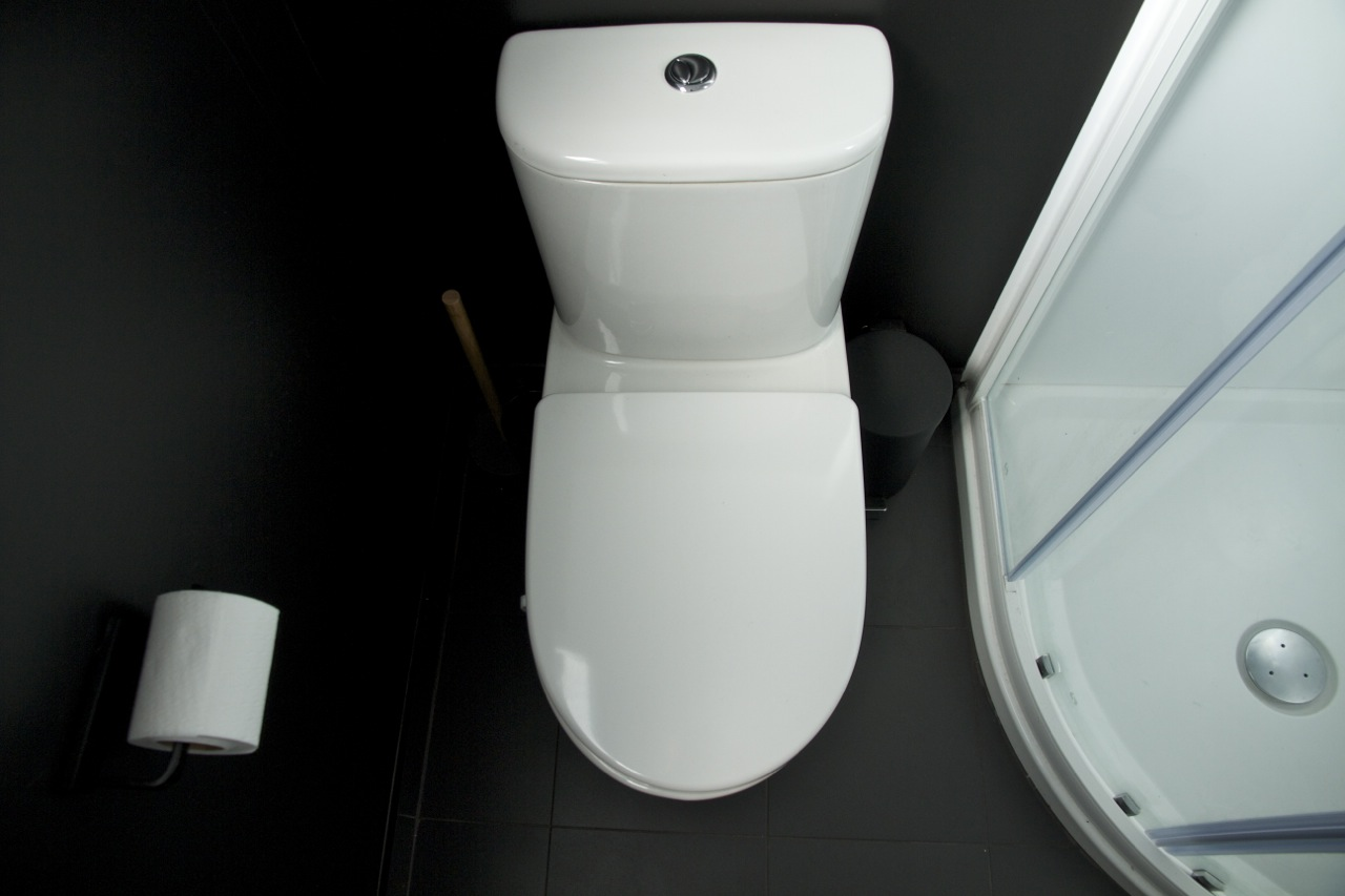 Pearson and Projects Bathroom Toilet.jpg
