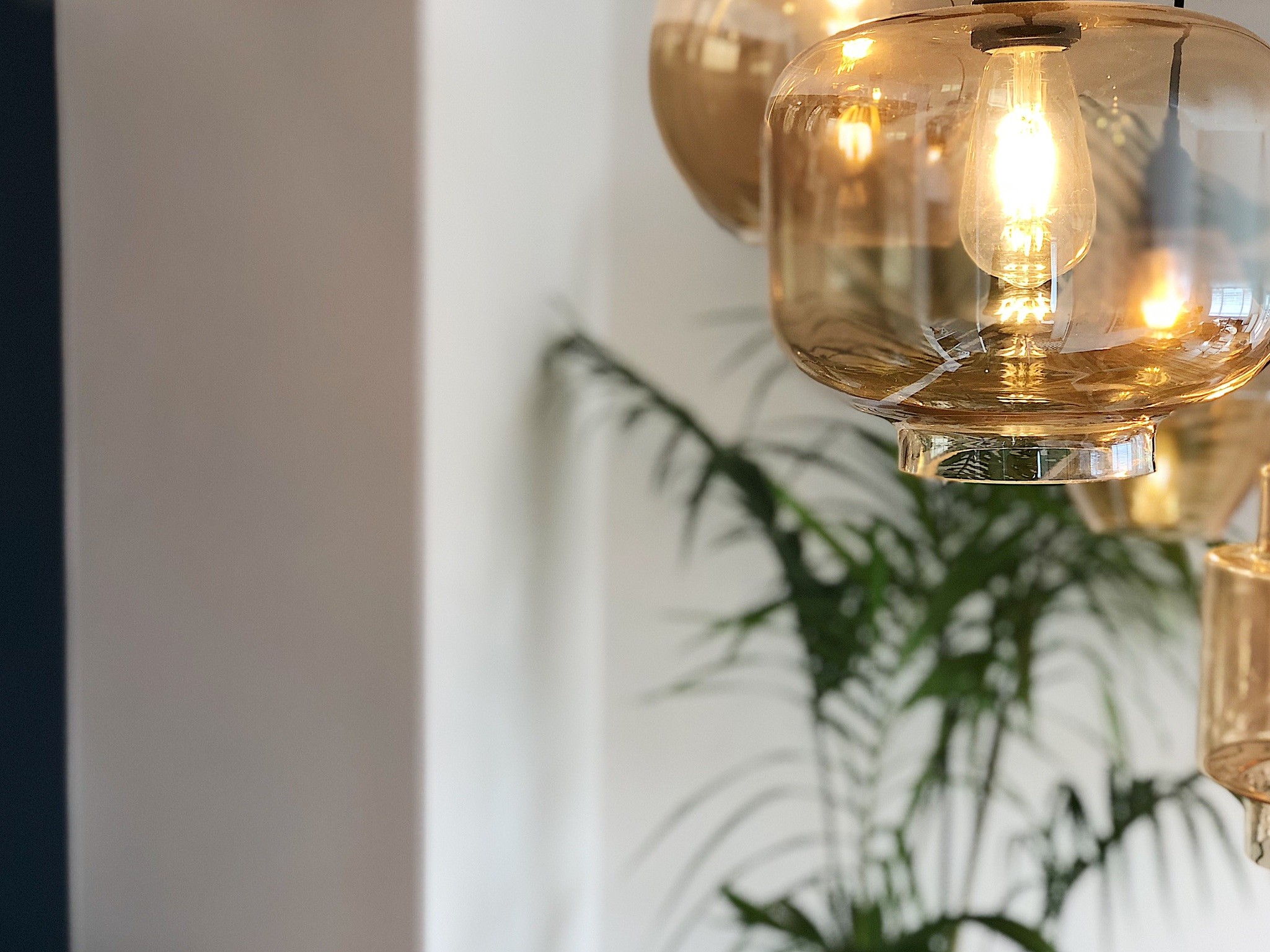Pearson and Projects Relocatable Reno Dining Project Pendant Palm.jpg