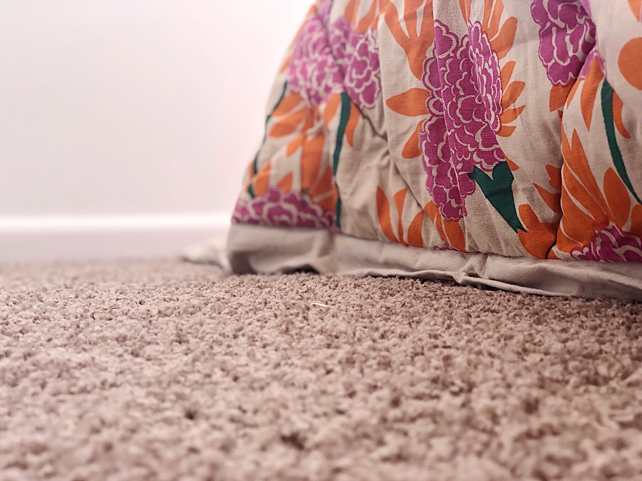 Pearson + Projects The Expert Reveal Bedroom Simple Carpet Light Beige.jpg