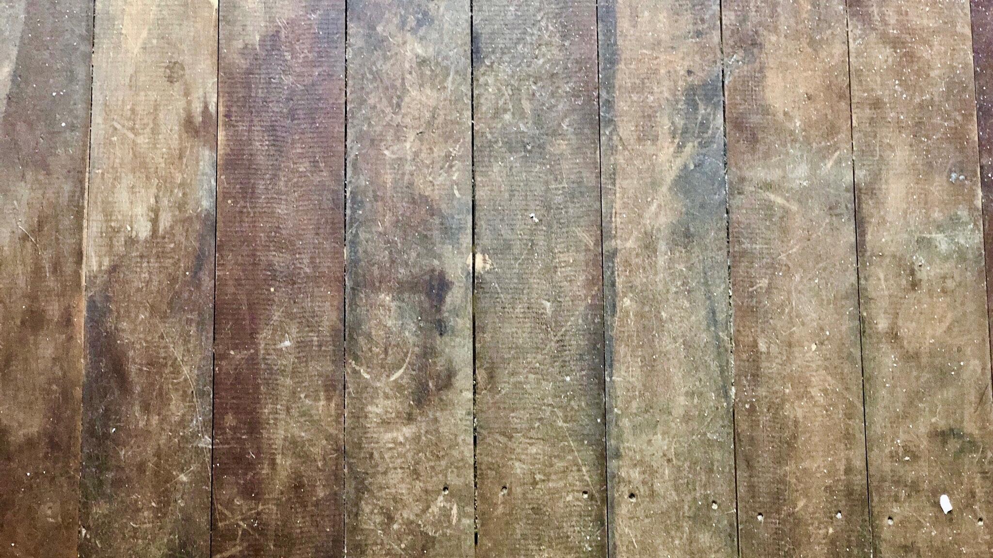 Pearson + Project Hardwood Flooring Oil Sand Active Floor Sanding - 5.jpg