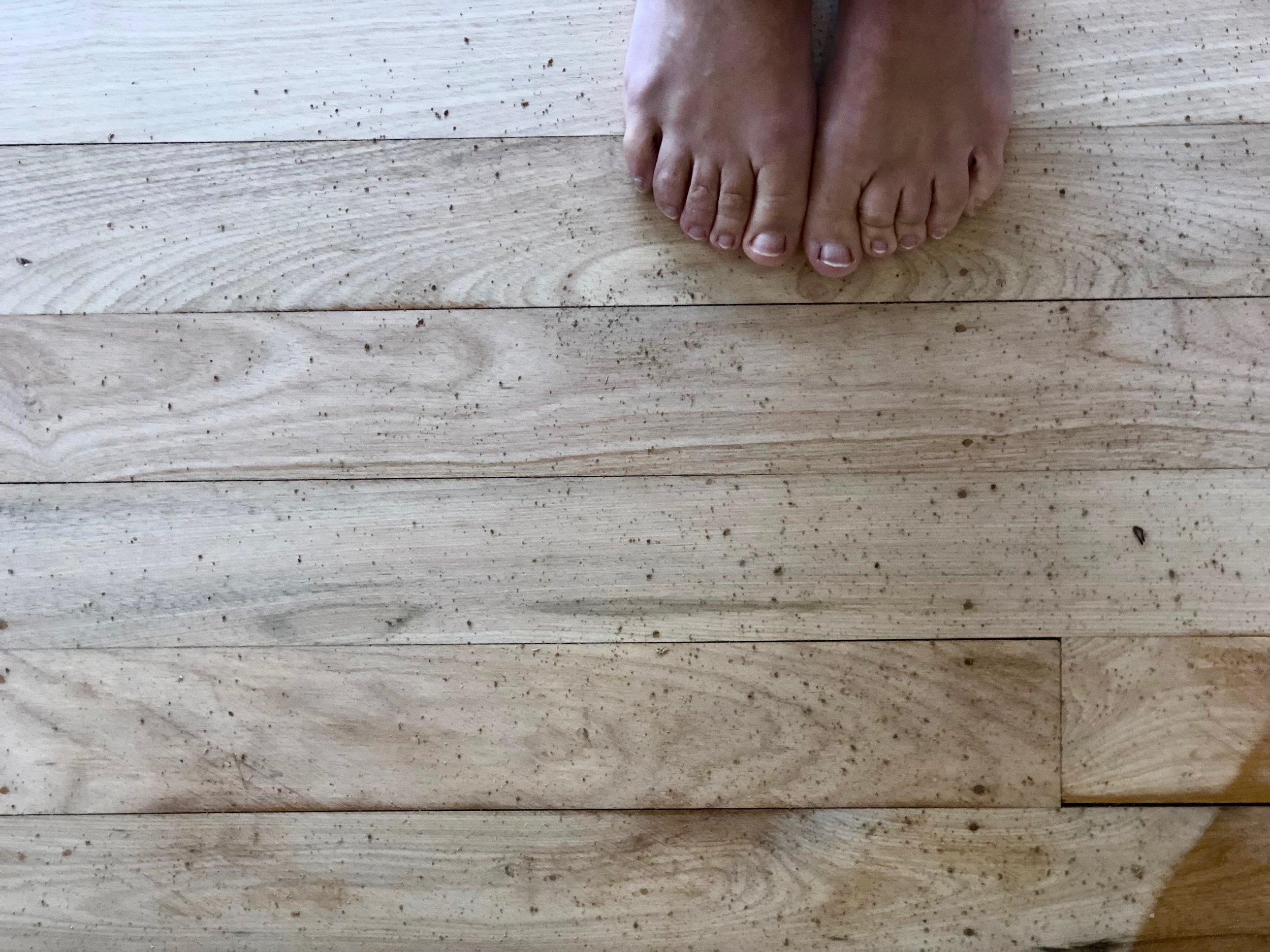 Pearson + Project Hardwood Flooring Oil Sand Active Floor Sanding - 8.jpg
