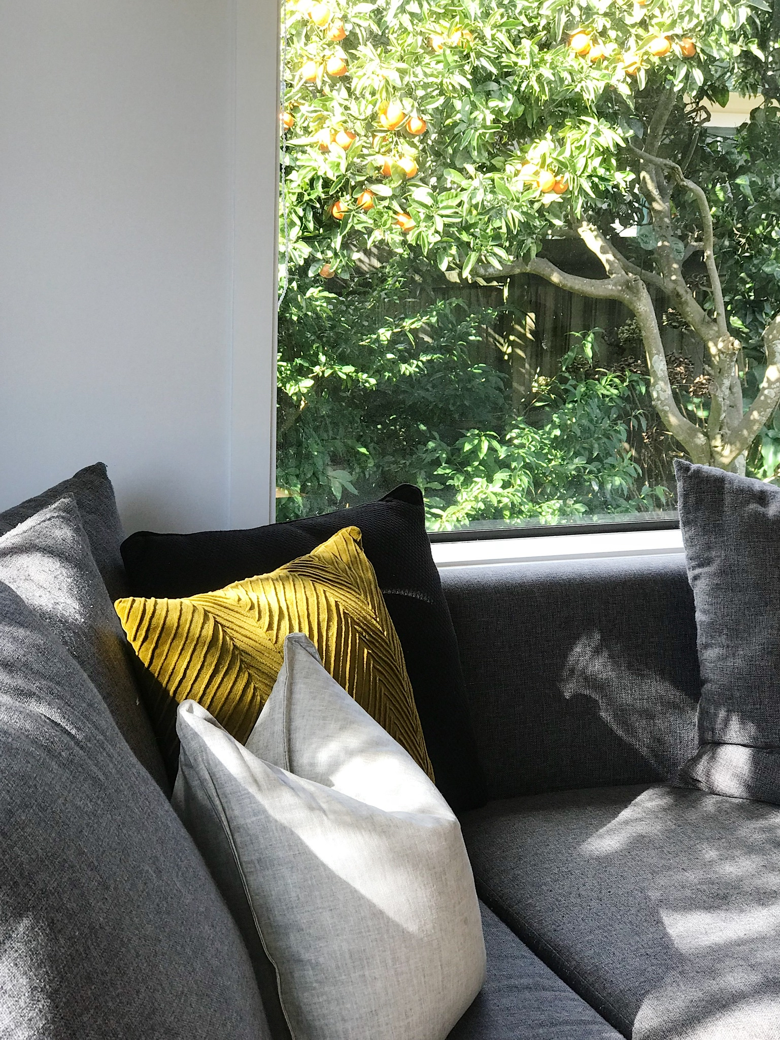Pearson + Project The Reno Race The Rookies Lounge Tawa Floor Small Space Lounge Cushions Couch.jpg