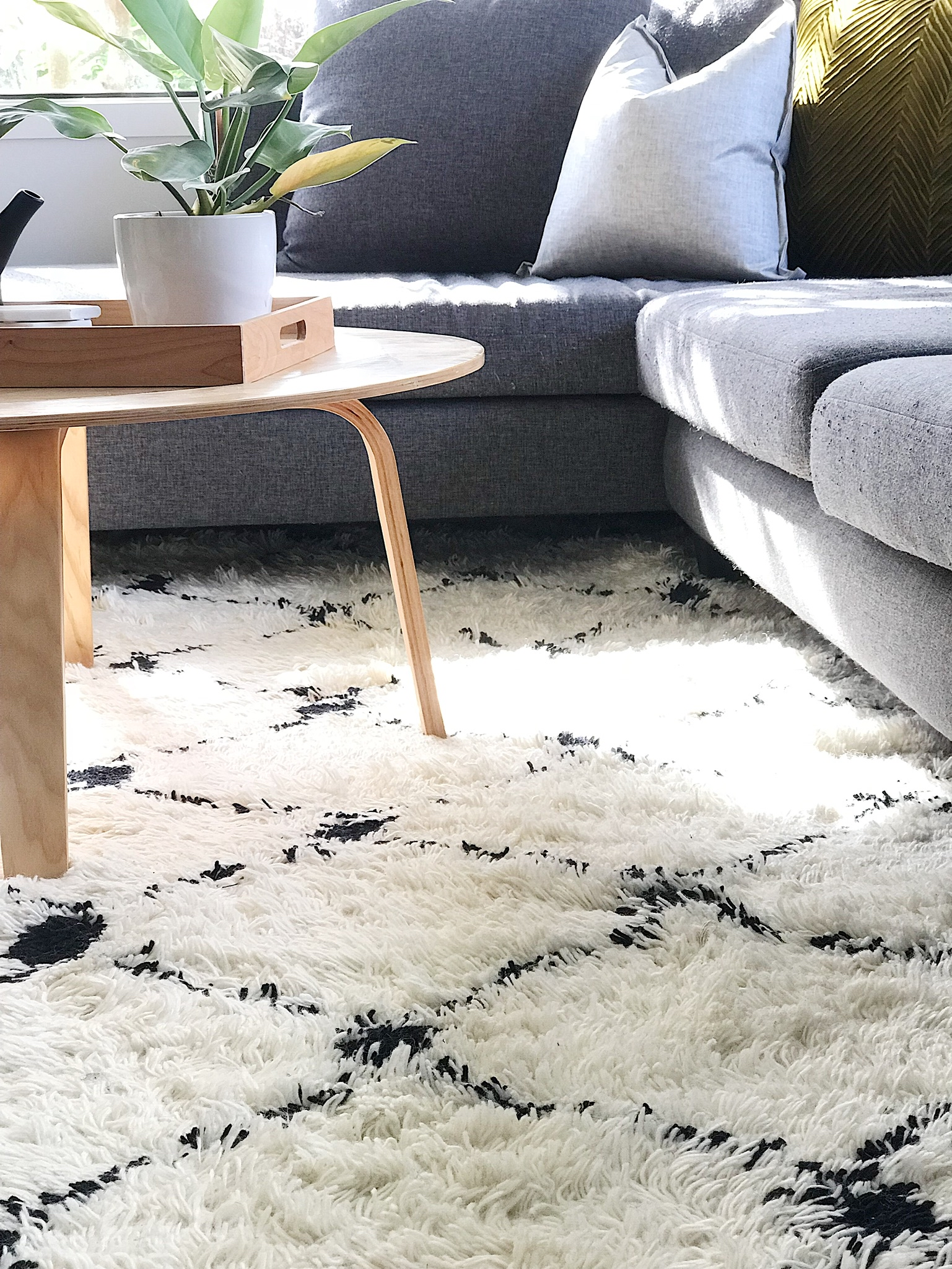 Pearson + Project The Reno Race The Rookies Lounge Tawa Floor Small Space Lounge Plant TV Unit Rug Couch.jpg