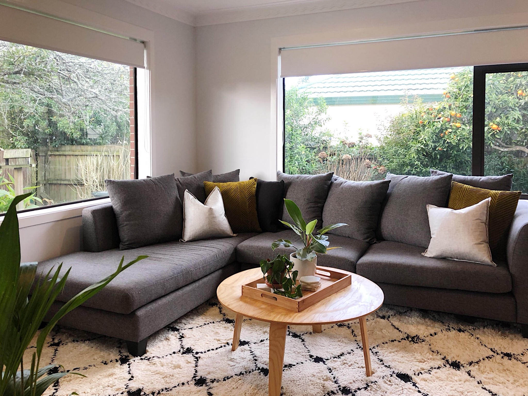 Pearson + Project The Reno Race The Rookies Lounge Tawa Floor Small Space  Lounge Plant TV Unit Couch.jpg