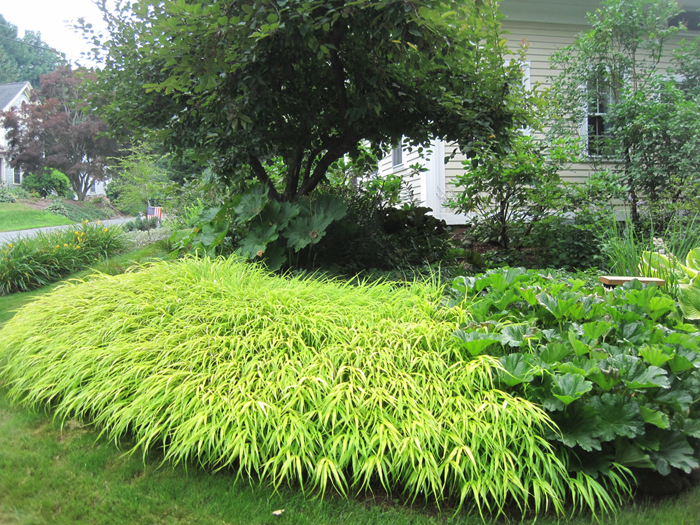 Blog Enchanted Gardens