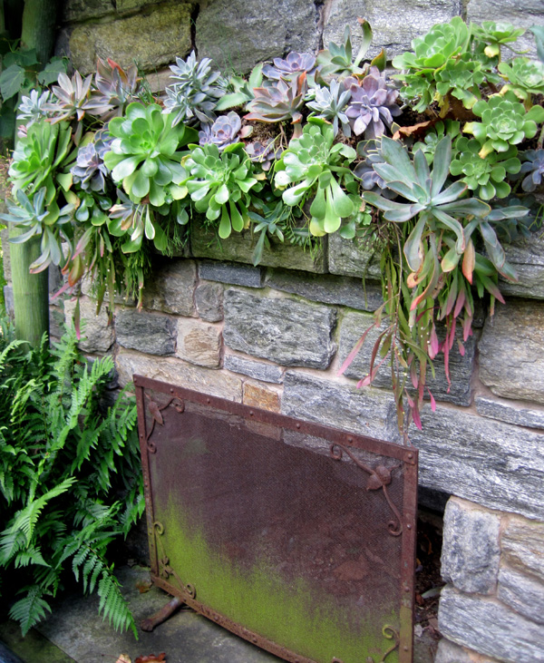 A second outdoor fireplace is festooned with succulents.