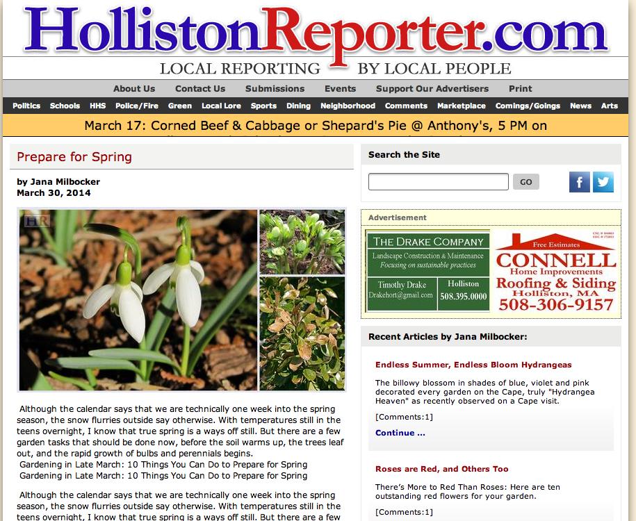 Holliston reporter